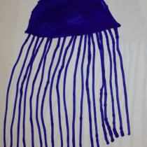 Tommy, 5, Annapolis, MD: Jelly-O